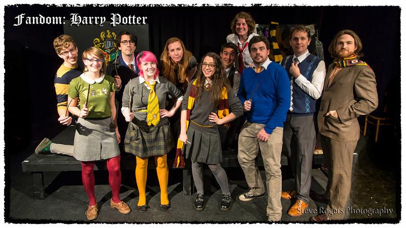 Fandom : Harry Potter - February 16, 2013