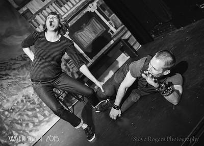 Wafflefest 2015 - The Knuckleball Now