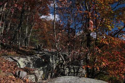 Pratt Rock