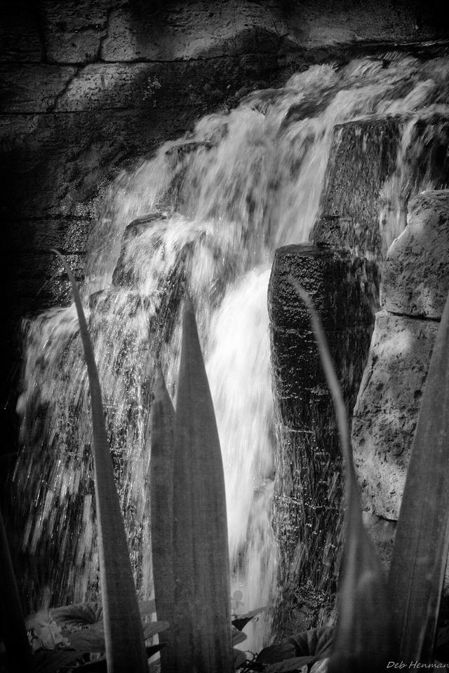 Waterfall in Black and White in Opryland Hotel
