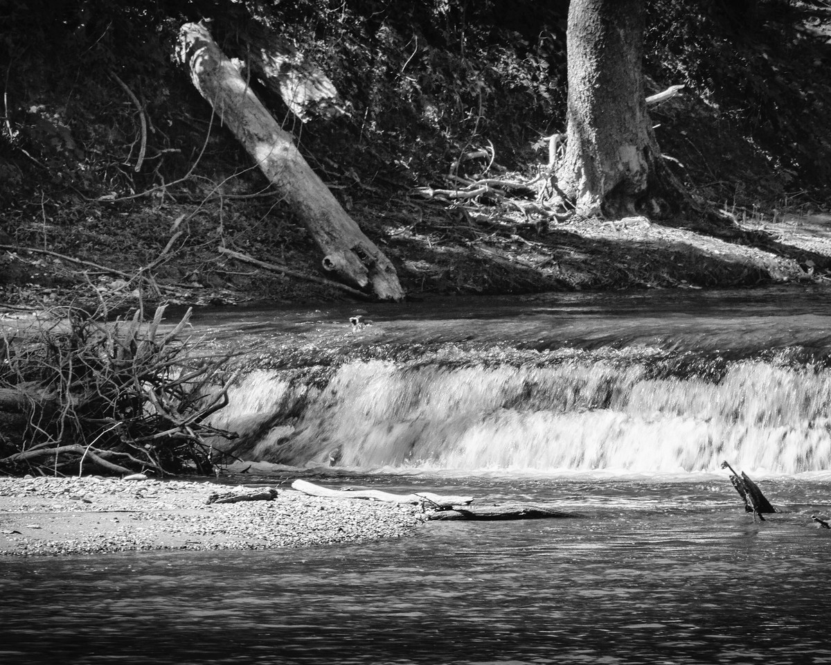 Hindostan Falls on the White River in BW