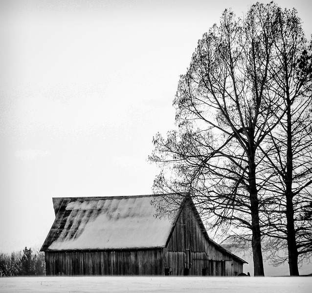Rafetown Winter