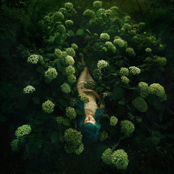 Surreal Fine ART PHOTOGRAPHY  - cover