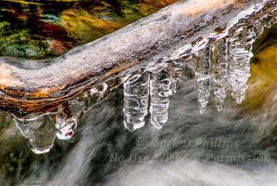 Ice forms on branches above stream at Blandford Ski Area in Massachusetts