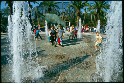 Opening Day at Lowry Park Zoo in Tampa, Florida
