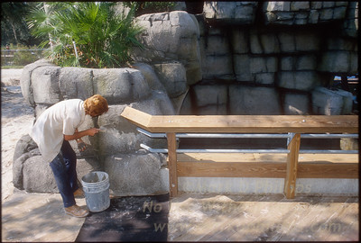 Creating rocks and natural habitat at Lowry Park Zoo in Tampa, Florida