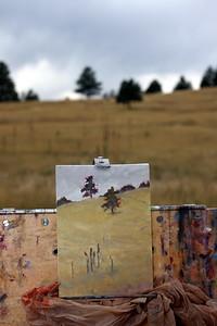 Jennifer Riefenberg's Easel, Mt. Falcon