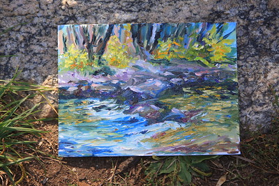 The work of the Artist Patty Dwyer, Clear Creek