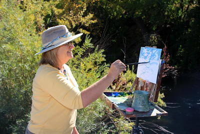 Patty Dwyer, Artist, begins her Clear Creek work