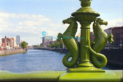 The seahorses of Grattan Bridge -  3
