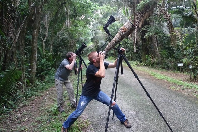 Shooting from the road at Chan Chich Lodge in Belize.