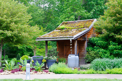 Water Shed - - The North Carolina Arboretum