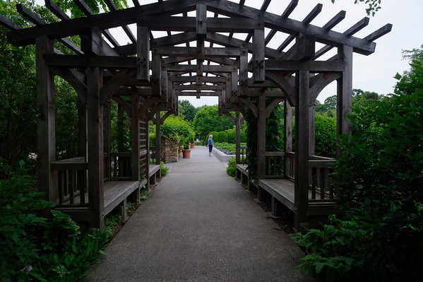 Walkway - The North Carolina Arboretum