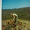 Davis-Digging Grenade Sump