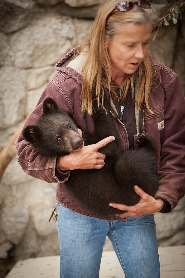 Week 3, May 26. Baby bear
