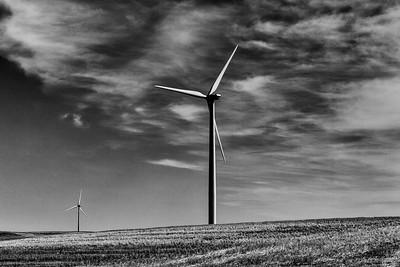 The Turbines