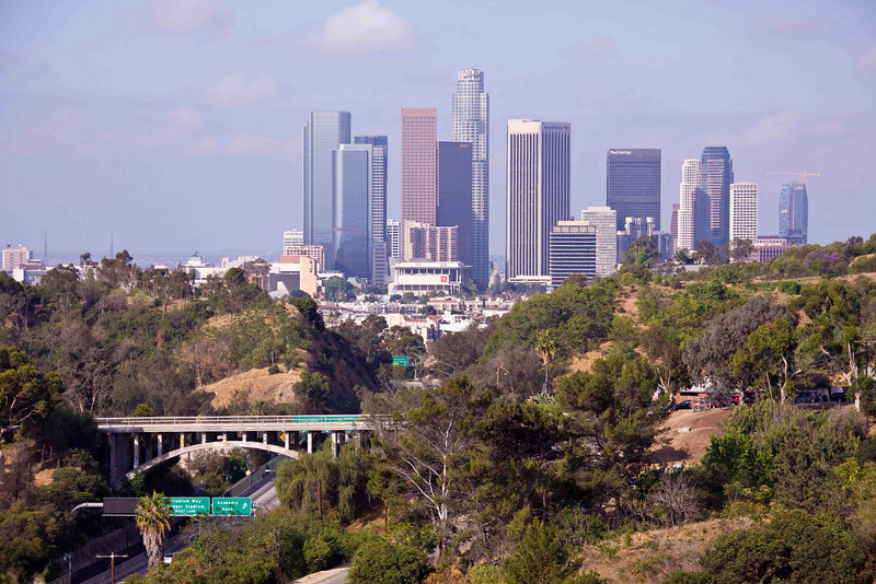L.A. Skyline from Elysian Park