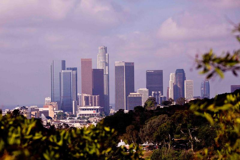 L.A. Skyline from Elysian Park