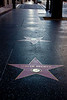 Among the 4,000 stars on the Hollywood Walk of Fame