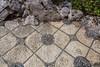 IMG_7610 Floor with Soujou Rocks
