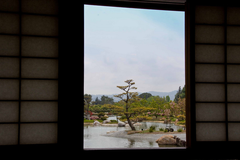 View from inside the tea house