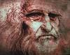 DSC01205  Da Vinci Selfportrait