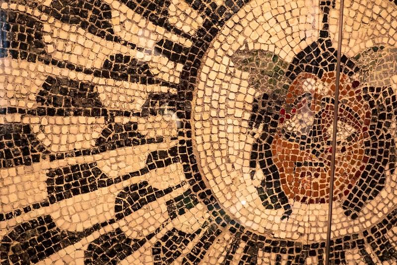 DSC00354 CU Mosaic