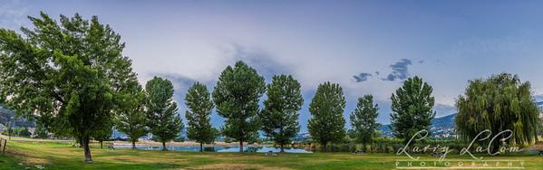 Cub Lake in Summer
