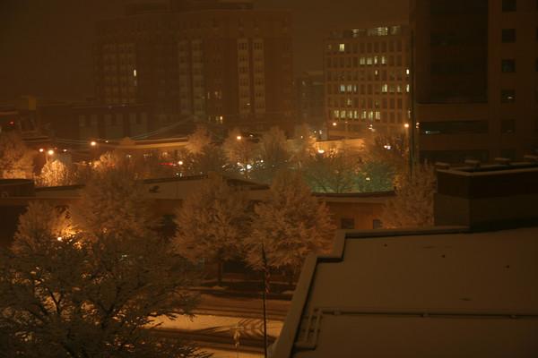 """Feb 3, 2010 - 3"""" Snow"""