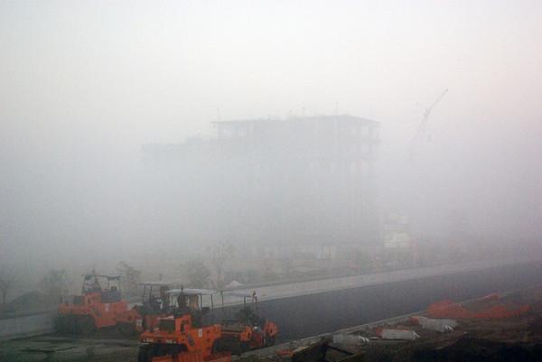 The Mist (1 Photograph)