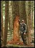Looking for Elk 2007