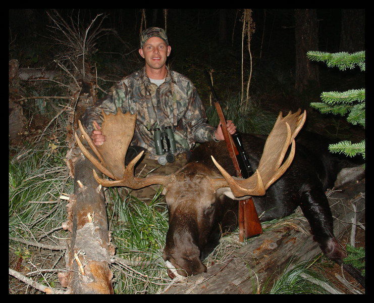 Idaho Moose 2005