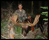 Idaho Moose 2005