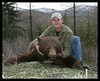Washington Black Bear 2007