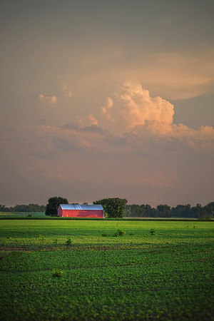 Farmscape #5