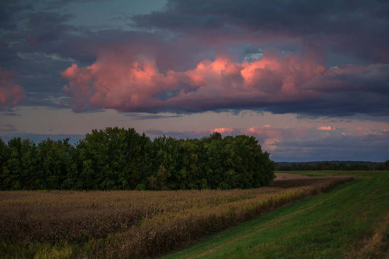 Rural Evening #2