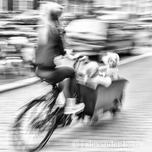 Dutch Kid Carrier