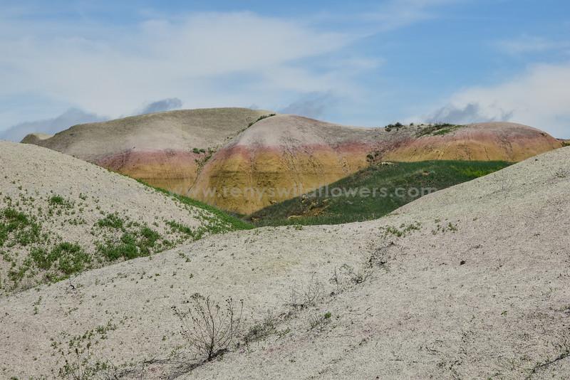 Badlands Natl Pk, yellow mounds, Dillon Pass