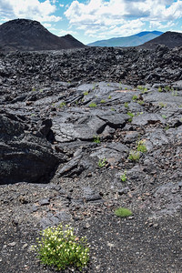 Craters of the Moon Natl Mon, Lava Flow