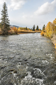 Fall color, Wind River