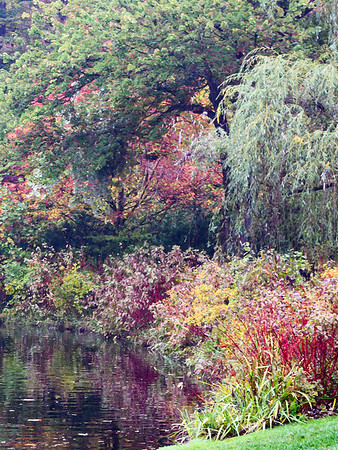 Pond at Longwood Gardens