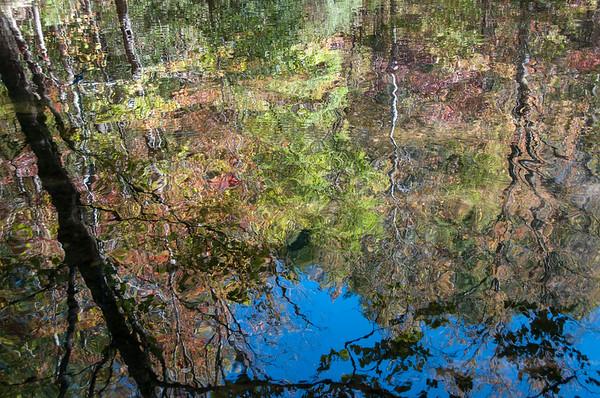 Citico Creek Reflections