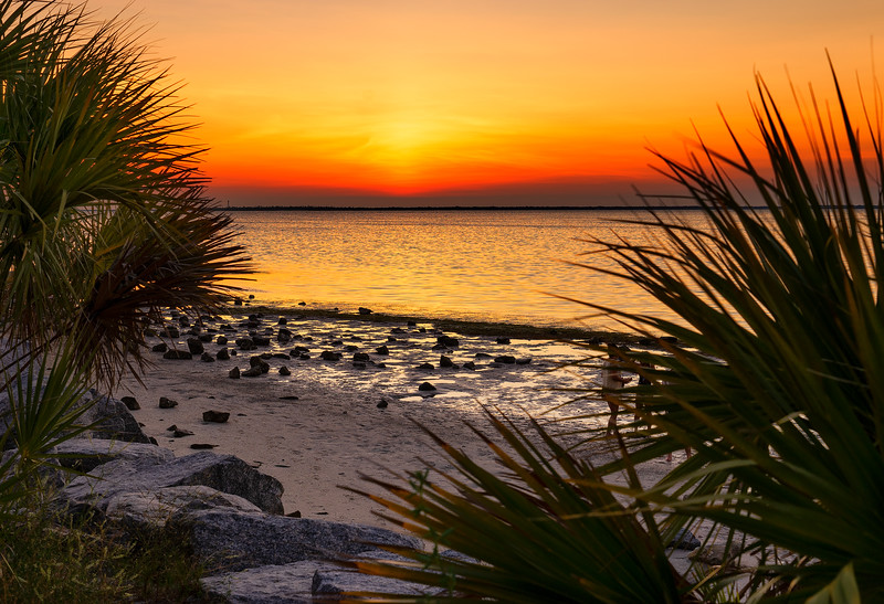 Fred Howard County Park, Tarpon Springs, FL