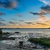 Dunedin Channel from Weaver Park