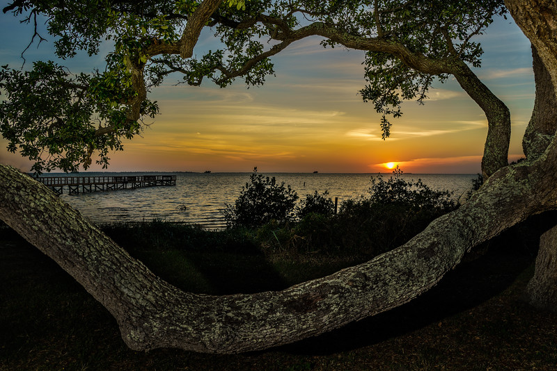 Live Oak Branch; Crystal Beach Pier