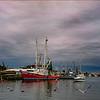 Tarpon Harbor