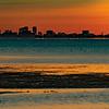 Tampa Skyline at Sunrise