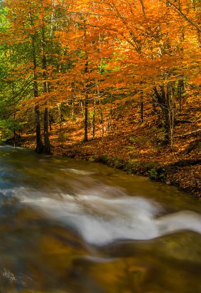 Jordan Stream; Acadia NP