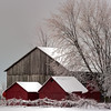 Barns in Snow; Frankenmuth, MI