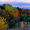 Fall Foliage:  Old Mission Peninsula